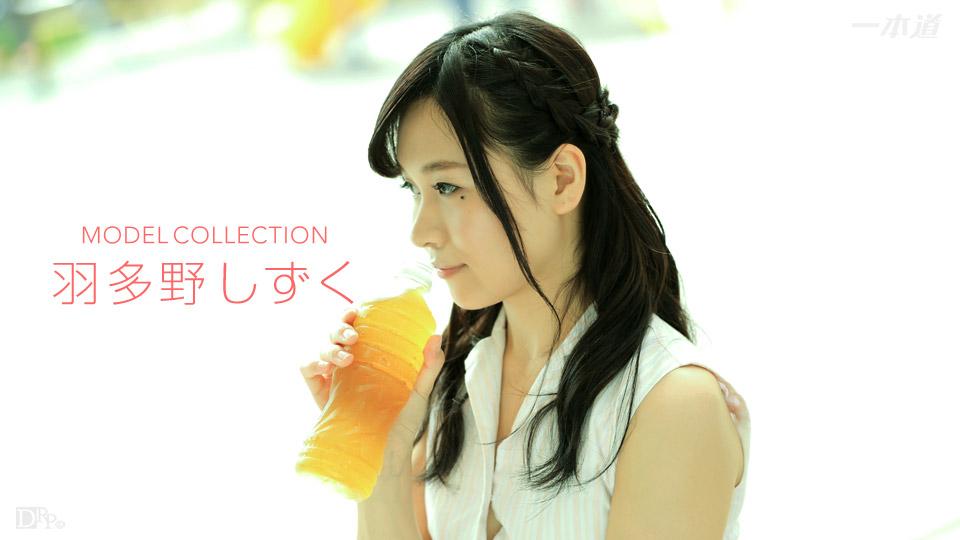 Hatano Shizuku(羽多野しずく) モデルコレクション